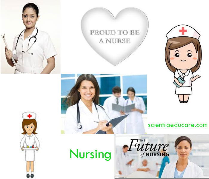 nursing a a noble profession February's guest, donna cardillo, ma, rn looks into nursing as a profession and not just a job i recently read an article on the web where the nurse author's stated.