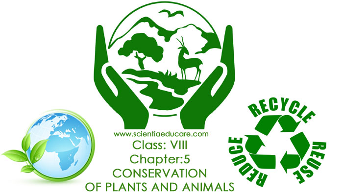 5-CONSERVATION-OF-PLANTS-AN