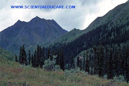 scientiaeducare103