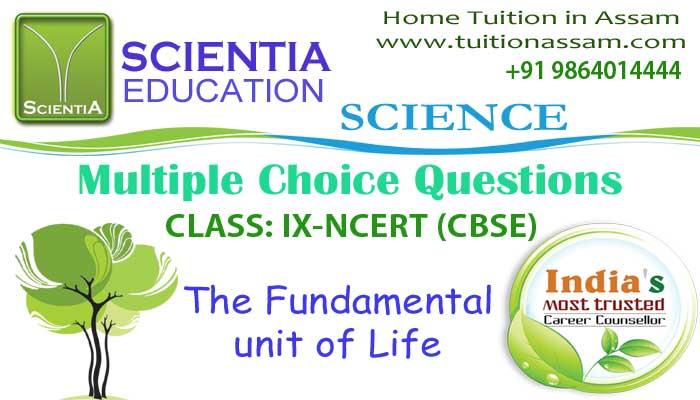 The-Fundamental-mcq