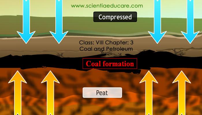 3-Coal-and-Petroleum